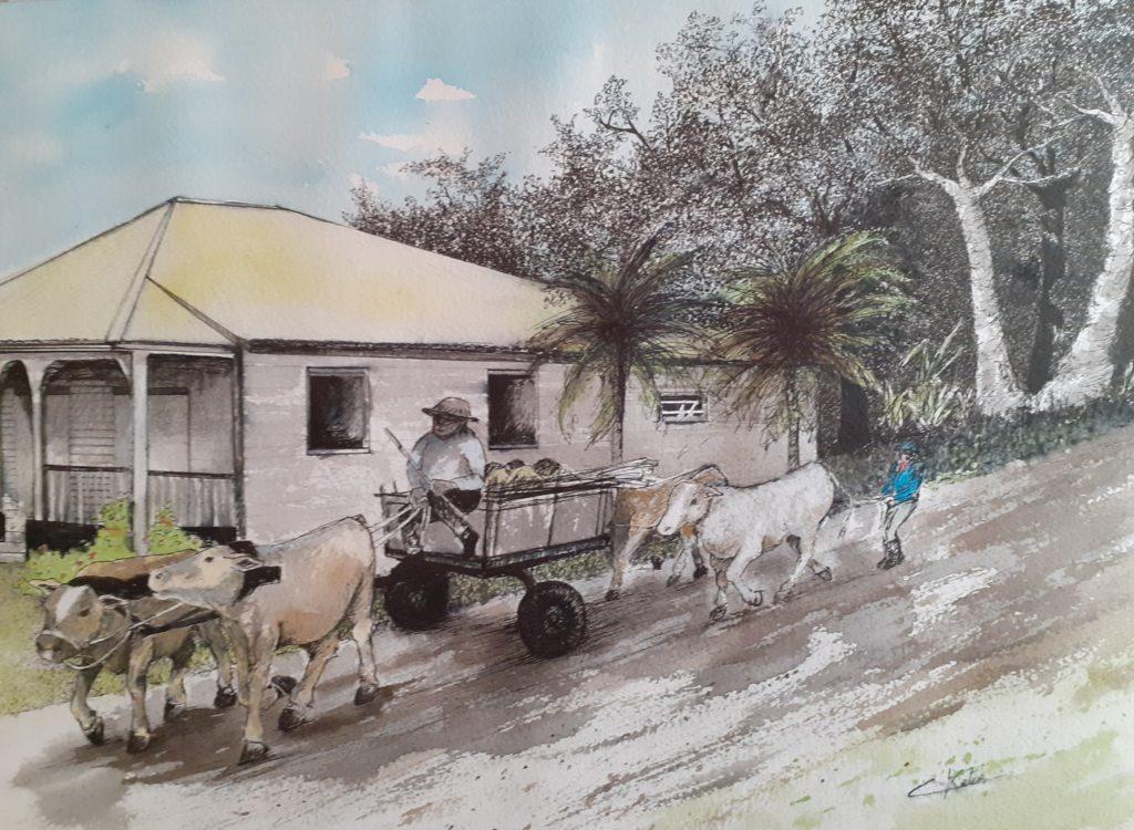 """""""Guadeloupe 2021"""" aquarelle et encre de chine sur papier arches 300g - 40x50 encadrée 80€"""